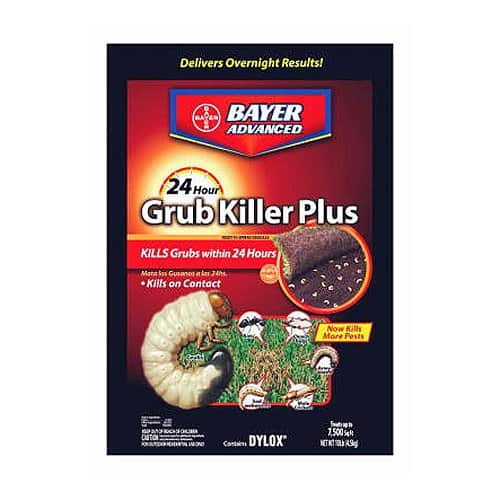 best lawn grub killer
