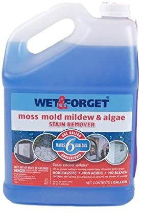 Wet and Forget 10587 1 Gallon Moss, Mold and Mildew Stain Remover review Best Moss Killer for Driveways