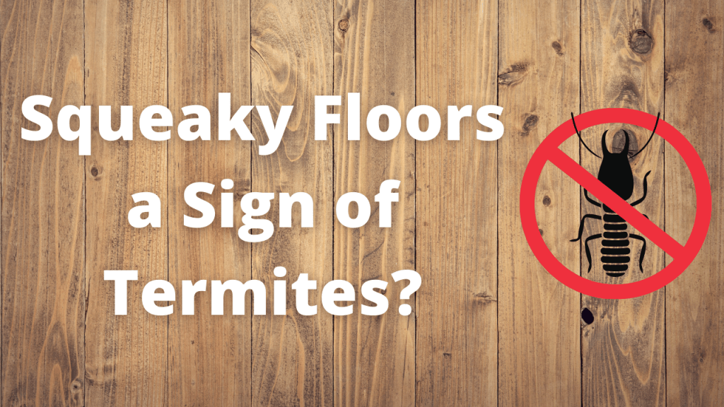 Are Squeaky Floors a Sign of Termites